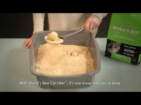 World's Best Cat Litter™ on The Lifestyle List - Use Less, Get More