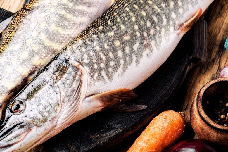 Wild caught fish for healthy cat food.
