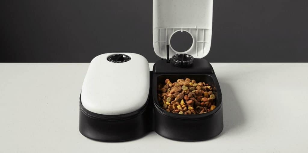 Automatic cat feeder for cats